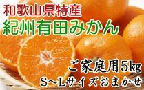 [厳選]紀州有田みかんご家庭用5kg(S~Lサイズおまかせ)