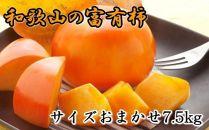 [甘柿の王様]和歌山産富有柿約7.5kgサイズおまかせ【2021年11月初旬頃発送開始】