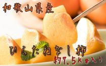 ※受付終了※ 【秋の美味】和歌山の平たねなし柿 約7.5kg