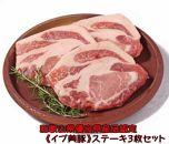 【和歌山ブランド】イノブタ「イブ美豚」ステーキ3枚セットステーキソース付き 16-P