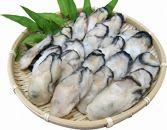 瞬間冷凍!冷凍むき身牡蠣1㎏【漁師直送!】