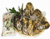 殻付き生牡蠣1.5kg,むき身生牡蠣500g【漁師直送!】