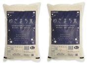 【令和元年米】極上魚沼産コシヒカリ「ゆきまち米」5kg×2袋