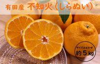 和歌山県有田産不知火5kg(18~24玉)[2021年2月~発送]