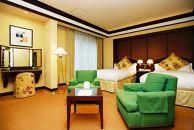 水戸プラザホテル ツインルームペア宿泊券