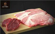 おおいた和牛A4ランク以上ヒレ&リブロースステーキセット(各2枚)