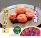 しそ漬梅(1kg×1箱)