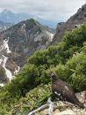 北杜の登山ツアー及び甲斐駒ヶ岳七丈小屋ご利用クーポン券(6000円相当)