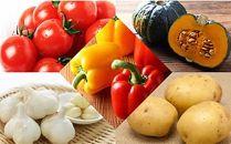 【2020年8月~9月発送予約分・数量限定】季節の野菜セット