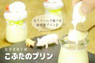 AS01-10こぶたのプリン・10匹セット(純・生クリーム&カスタード)【旦過市場】
