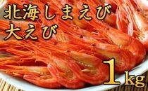 2019年秋新物入荷!北海しまえび!どーんと大えび1kg!【野付産】