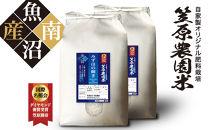 南魚沼産笠原農園米みずほの輝き【無洗米】5kg×2