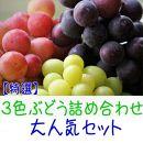 【先行予約】特撰 3色ぶどう詰め合わせ大人気セット 約2kg