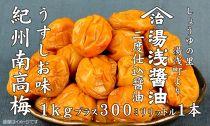 紀州南高梅うすしお味1kgと湯浅醤油1本