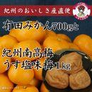 有田みかん約700gと紀州南高梅うすしお味1kg(梅干しサイズ中粒~大粒)