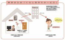 離れて暮らすご家族をそっと見守る、東京ガスの「くらし見守りサービス(ご家族)」(1年間)