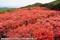 【気仙沼市】JTBふるぽWEB旅行クーポン(30,000円分)