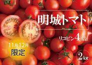 《7月まで延長!!》リコピン4倍トマト【明城トマト大玉】2㎏