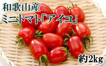 和歌山産ミニトマト「アイコトマト」約2kg(S・Mサイズおまかせ)【2021年1月出荷分】