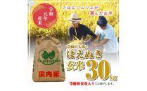 令和元年産米庄内産農園貞太郎のはえぬき玄米30kgTE<農園貞太郎>