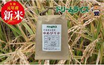 B-030【玄米】石狩産特A米ゆめぴりか10kg