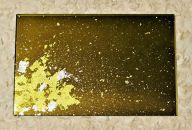 ガラスプレートS(MAJO金箔・グリーン)