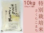 あきたこまち「特別栽培米さくらこまち10kg」中仙さくらファーム