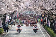 【10名限定・駐車券付き】さくらマラソン出走権(10マイル)