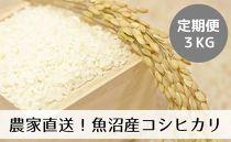 【定期便/全12回】農家直送◇魚沼産コシヒカリ「山清水米」精米3kg