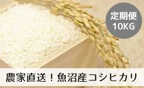 【定期便/全12回】農家直送◇魚沼産コシヒカリ「山清水米」精米10kg