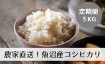 【定期便/全12回】農家直送◇魚沼産コシヒカリ「山清水米」玄米3kg