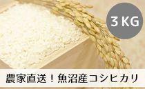 農家直送◇魚沼産コシヒカリ「山清水米」精米3kg