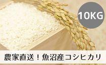 農家直送◇魚沼産コシヒカリ「山清水米」精米10kg