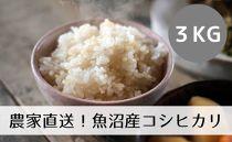 【令和2年産】農家直送◇魚沼産コシヒカリ「山清水米」玄米3kg