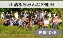 【棚田オーナー】山清水米みんなの棚田 標準コース