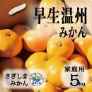 ◆発送は12月中旬~◆瀬戸内さぎしまの早生温州<家庭用約5kg>