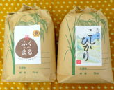 令和元年産、茨城コシヒカリ5Kg&特選ふくまる5Kg食べ比べセット【白米発送】