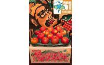 青森県特別栽培農産物認証農園家庭用 葉とらずふじ約10㎏