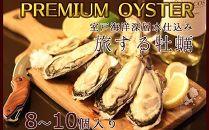 AK014 殻付き牡蠣旅する牡蠣プレミアムオイスター室戸海洋深層水室津8~10個入り