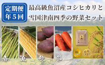 【数量限定】魚沼産コシヒカリ雪椿と四季の野菜詰め合わせ定期便全5回発送【セットA】