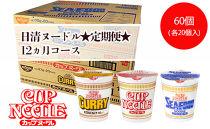 【定期便12か月】日清ヌードル3種セット各1箱(20食)合計3箱