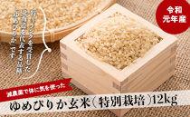 【減農薬で体に気を使った】ゆめぴりか玄米12kg
