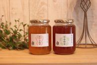 堀養蜂園「園主が選ぶ1kg2本セット」