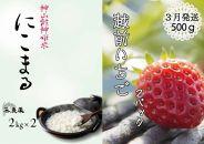 無農薬米(にこまる)4㎏&3月発送/苺500g(先行予約)