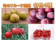 【2020年度産先行受付】果物の郷中山町産「旬のフルーツ定期便名物4種」
