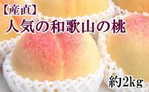 【先行予約】【産直・人気の特産品】和歌山の桃 約2kg・秀選品