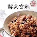 【ポイント交換専用】【毎月定期便6回】冷凍酵素玄米お結び型20個