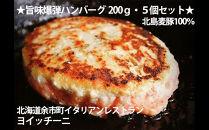 ☆旨味爆弾ハンバーグ5個セット☆<ヨイッチーニ>北島麦豚使用!