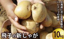 飛子の馬鈴薯10kg(秋じゃが)