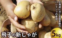 飛子の馬鈴薯5kg(秋じゃが)